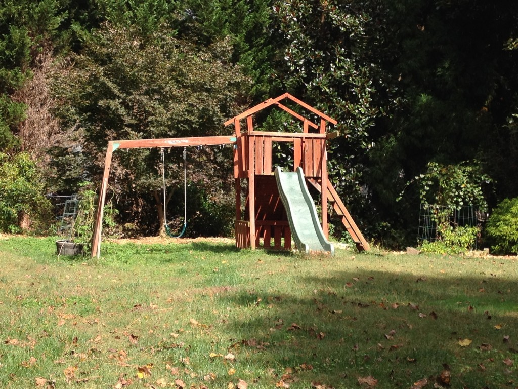 I am Emotionally Attached to a Swingset