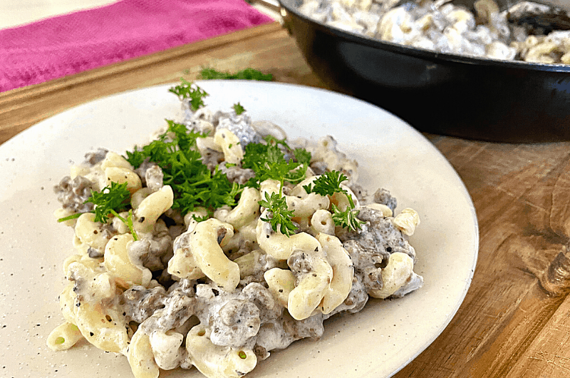Hamburger Beef Stroganoff on a plate with parsley